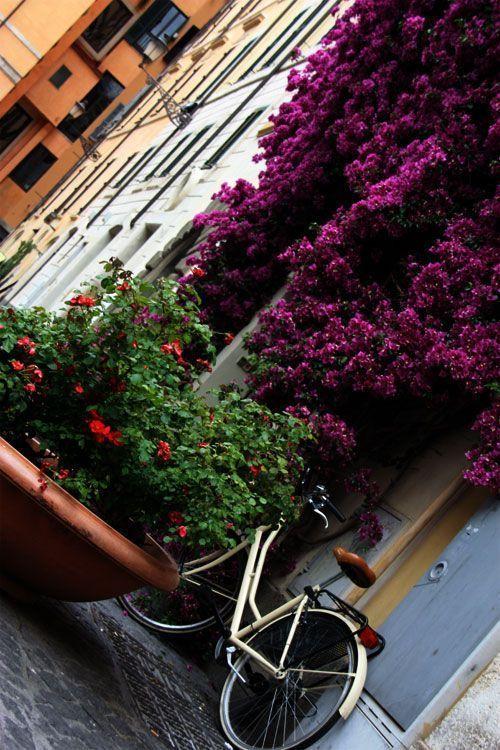 Calle floreada en Roma