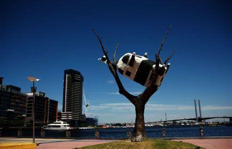 Escultura vaca en árbol, Melbourne