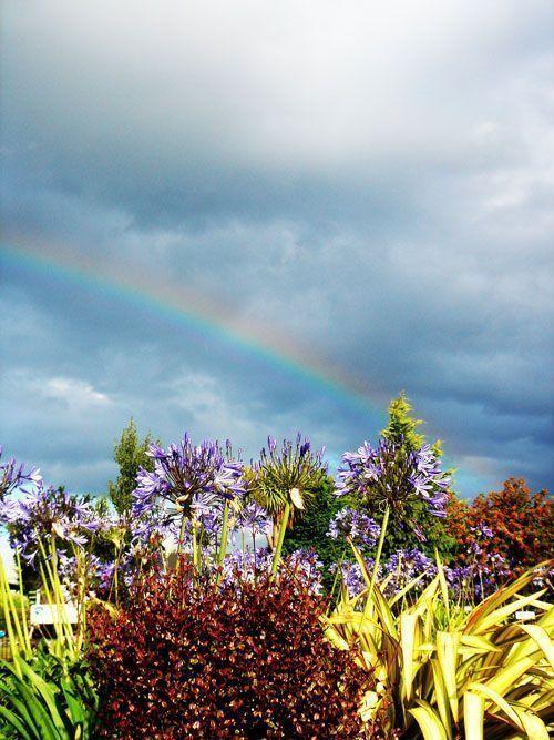 Espectacular arcoiris en Nueva Zelanda