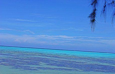Espectaculares playas en Moorea