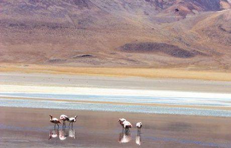Panorámica de la laguna olorosa en el Salar de Uyuni