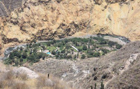 Panorámica del oasis de Sangalle en el cañón del Colca