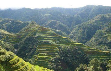 Espectacular paisaje de terrazas de arroz en banaue