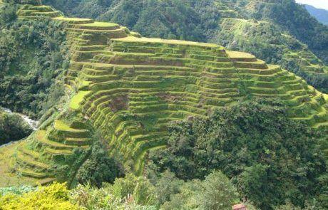 Paisaje de terrazas de arroz en trekking de Batad a Bangaan
