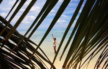 Bibi entre hojas de palmeras, playa Temae, Moorea
