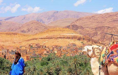 Panorámica de un oasis en Marruecos