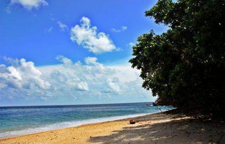 Espectacular playa en Fitzroy island