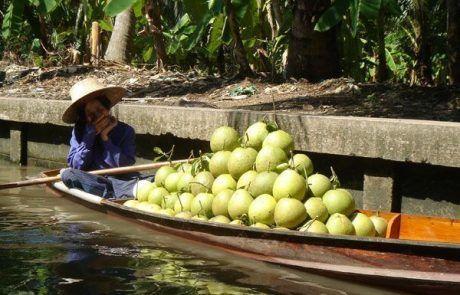 Puesto de cocos en el Floating Market de Bangkok