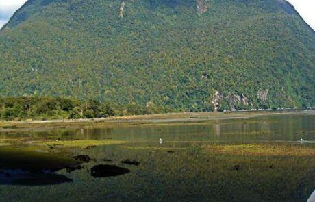 Reflejo raro en Mirror Lakes, Nueva Zelanda