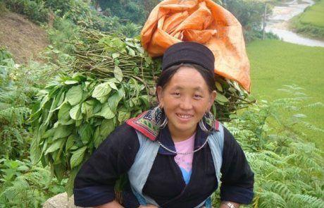 Retrato de una mujer en Sapa