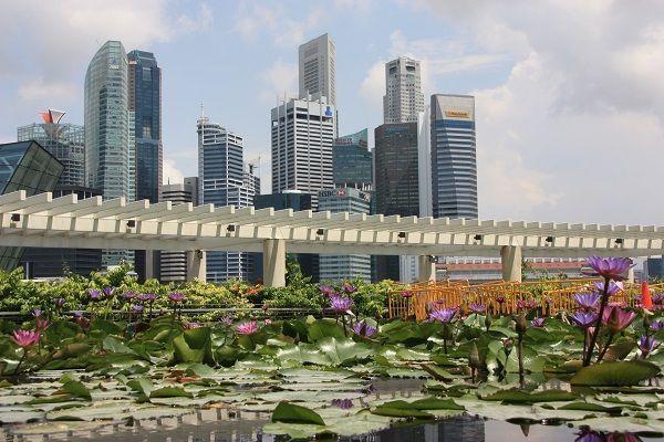Guía de la Ciudad de Singapur