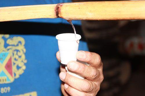 Sirviendo vino en una bodega de Ica