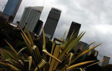 Skyline desde los jardines botánicos, Sidney
