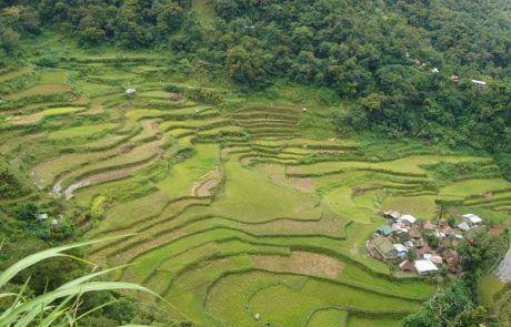 Terrazas de arroz de Bangaan
