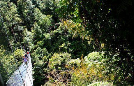 Trekking en Abel Tasman National Park en Nueva Zelanda