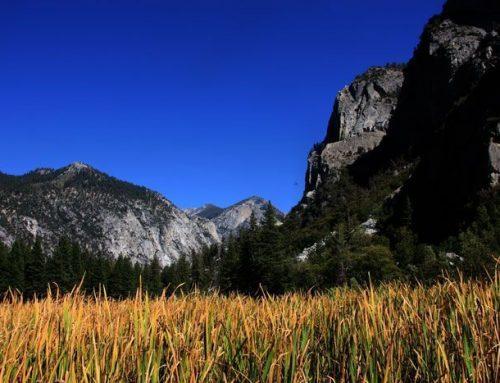 Los Mejores Parques Nacionales de los Estados Unidos
