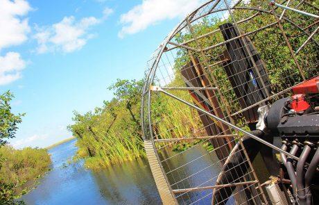 Recorriendo los everglades en un Airboat